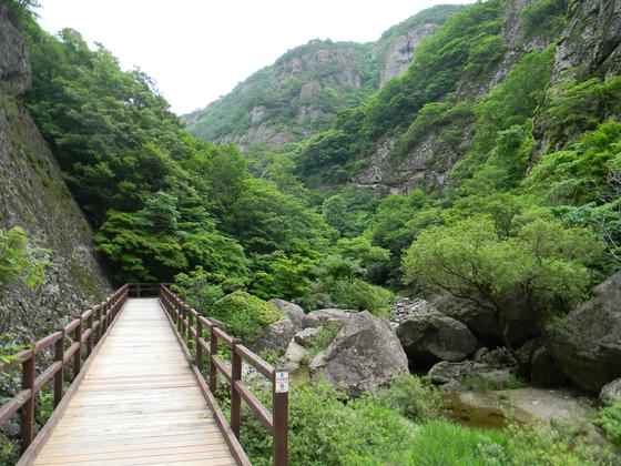 주왕산국립공원 절골계곡. [사진 국립공원공단]