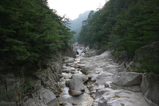오대산국립공원 소금강계곡. [사진 국립공원공단]