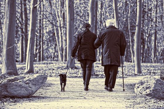 부부 중년 커플 노인 산책 개 걷기 [사진 pixabay]