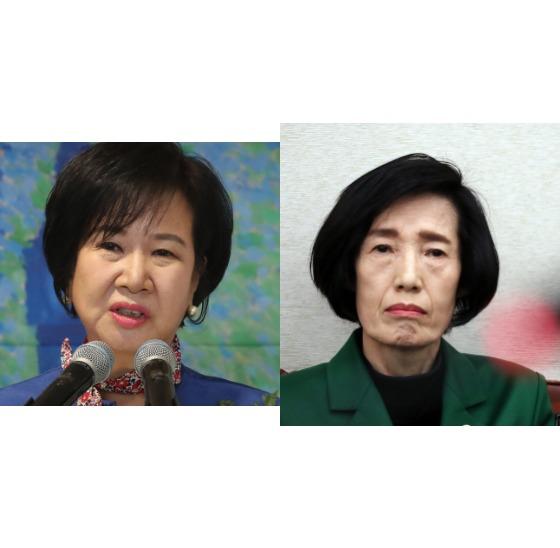 손혜원 의원(왼쪽)의 아버지를 국가유공자로 지정하는 과정에서 특혜를 제공했다는 의혹을 받았던 피우진 국가보훈처장에 대해 검찰이 무혐의 처분을 내렸다. [중앙포토]