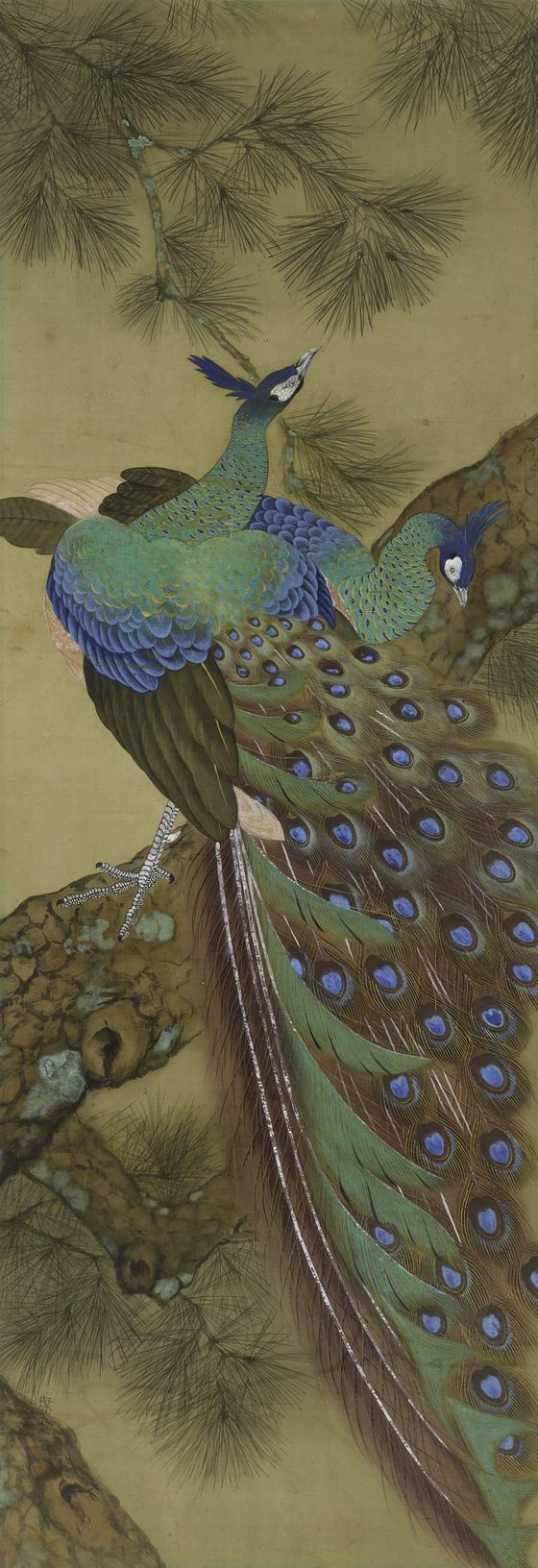 정찬영의 '공작'(1935). 화려한 색채와 섬세한 묘사가 돋보인다. [사진 국립현대미술관}