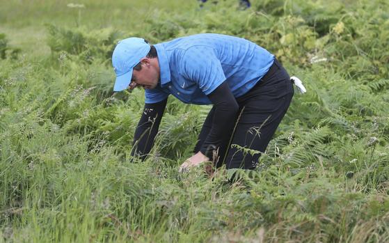 매킬로이가 1번 홀 그린 근처 러프에서 공을 찾고 있다. [AP]