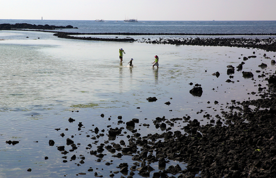 금능리 마을은 제주도에서 원담이 가장 잘 보전된 마을이다. 옛날 주민들이 힘을 합쳐 멸치를 길어 올리던 원담 안쪽 바다는 지금 아이들의 자연 놀이터로 활용되고 있다.