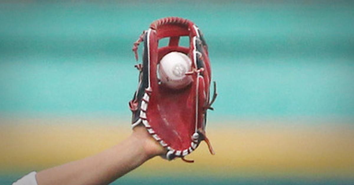 고등학교 야구부의 한 감독이 숨진 채 발견됐다. [연합뉴스]