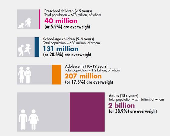전세계 연령별 과체중 인구 수. [사진 유엔식량농업기구]