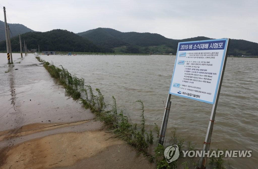 태풍 피해. 연합뉴스