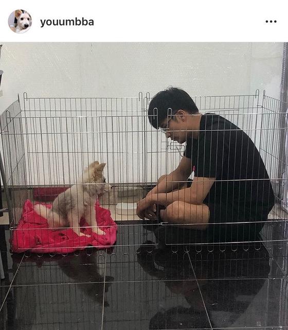 """배우 성훈, 임시 보호하던 유기견 입양…""""진짜 가족 돼주기로 약속"""""""