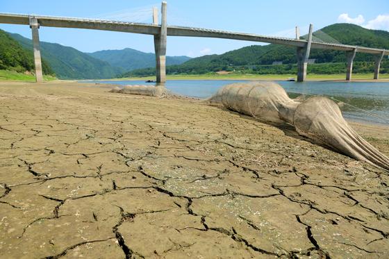 지난 5일 강원 인제군 남면 소양강 상류가 말라 일부 바닥을 드러내고 있다. 올 들어 7월 22일까지 중부지방 강수량은 평년의 49%에 수준에 머물고 있다. [뉴스1]