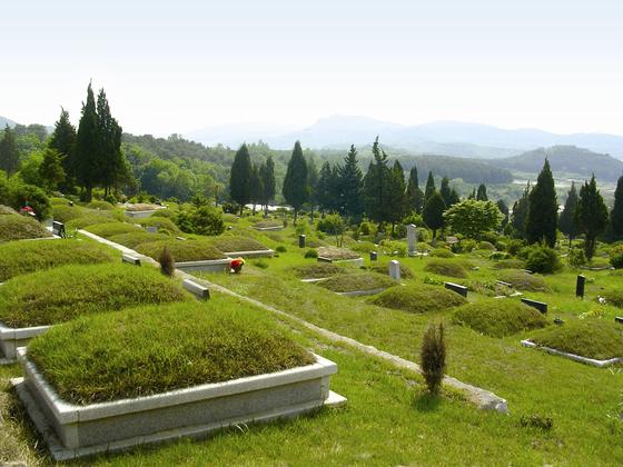사진은 국내의 한 추모공원의 모습. 우리나라의 추모 시설은 대부분 산에 위치해있다. 빈의 중앙묘지는 이와 다르게 누구나 편하게 오갈 수 있는 곳에 있었고, 숲과도 조화로운 모습이었다. [중앙포토]