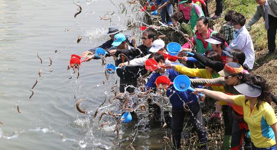 2013년 부산 수영강체육공원에서 모기퇴치 미꾸라지 방류행사를 진행하고 있다. [중앙포토]