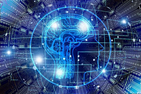 뇌는 우리 몸 구석구석을 컨트롤한다. 뇌에 휘둘리지 않고 잘 다스려야 건강해질 수 있다. [사진 pixabay]