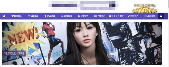 리얼돌을 판매중인 국내 한 업체의 홈페이지 모습. [인터넷 캡쳐]