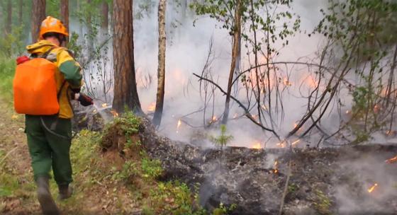 1일(현지시간) 대형 산불이 이어지고 있는 러시아 시베리아 극동지역의 숲에서 산림보호요원이 산불 진화작업을 벌이고 있다. [연합뉴스]