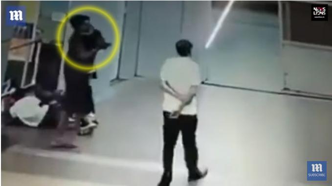 [사진 외신 데일리메일 유튜브 캡처]