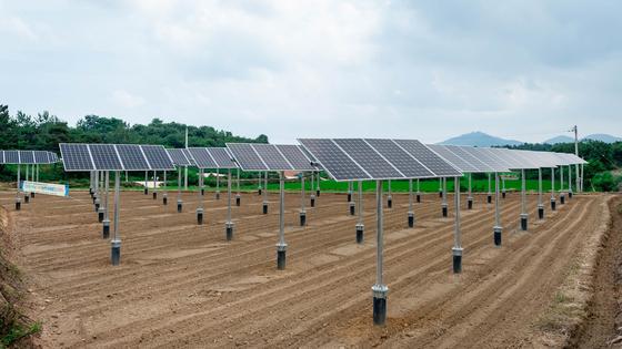 국회 예산정책처는 '2018 회계연도 결산 분석'에서 정부가 집중 투자한 태양광 등 에너지원의 설비효율이 감소했다고 밝혔다. 사진은 지난 7월 준공된 전남 영광의 영농병행 태양광 시설. [연합뉴스]