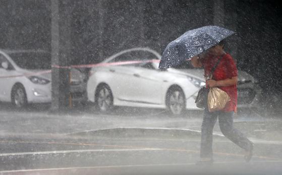 제8호 태풍 프란시스코가 북상중인 지난 6일 오후 폭우가 내리는 부산. 부산을 비롯한 남해안 지역은 제 10호 태풍 크로사의 영향권에도 들 것으로 보인다. [연합뉴스]