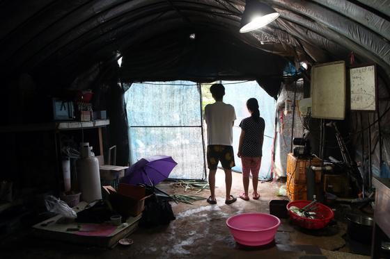 경기도 북부 한 농촌에서 사는 A씨는 비닐하우스 1개를 집으로 만들어 살고 있다. 고2 아들과 중3 딸은 2012년부터 3년 간 빌라에 산 것을 빼곤 평생 비닐하우스에서 살았다. 최정동 기자