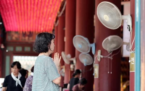 대학수학능력시험을 101일 앞둔 5일 오후 서울 종로구 조계사 대웅전에서 수험생을 둔 가족들이 기도를 하고 있다. [뉴스1]