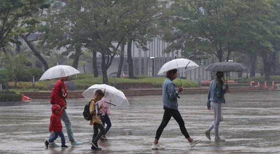 태풍 영향으로 비가 오락가락하는 이맘때면 농촌에서는 고추를 수확하고 말리느라 정신없다. [중앙포토]