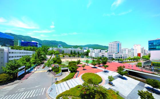 부산대 모습. 중앙포토