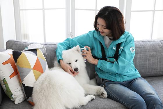 반려동물 돌봄 서비스 '도그메이트' [사진 도그메이트]