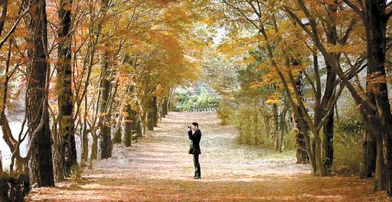 유족이 광릉추모공원 주변 숲을 둘러보며 떠나간 가족을 회상하고 있는 영상 캡처.