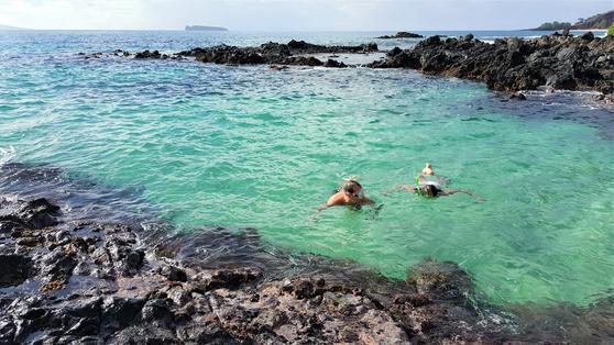 마우이 남쪽에 위치한 Wedding beach, 에메랄드빛 바닷속에서 거북을 만날 수 있다. 다양한 생명이 공존하는 삶이란 어떤 것인지를 생각해본다. [사진 강하라, 심채윤]