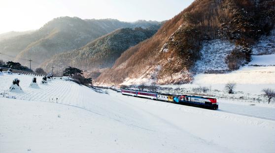 정선선 기찻길의 눈밭을 헤치고 달리는 기차. [중앙포토]
