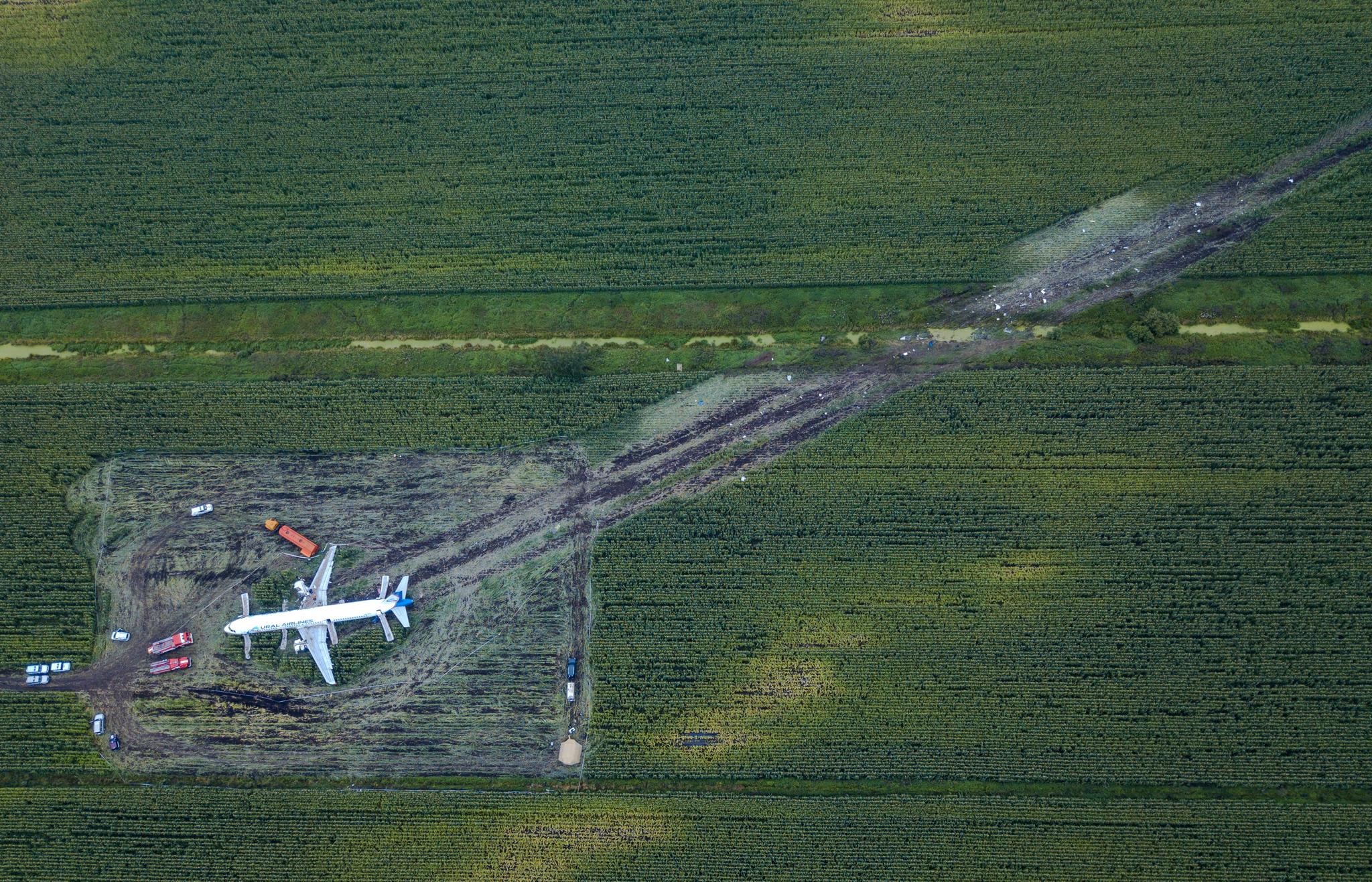 16일(현지시간) 에어버스 A321 여객기가 옥수수밭에 비상착륙한 흔적이 보인다. [AP=연합뉴스]