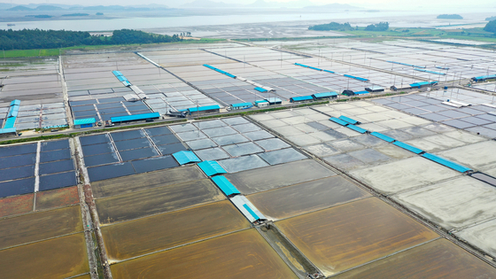 전남 신안군 지도읍 일광염전. 내년부터 천일염 대신 태양광 발전시설이 들어올 예정이다. 프리랜서 장정필