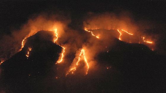 지난 17 일 브라질의 Tocantins 주 아마존 열대 우림이 불타고 있다.. 국립 우주 연구소 (National Institute for Space Research)의 자료에 따르면 브라질의 산불은 작년과 같은 기간에 비해 올해 1 월부터 8 월까지 82 % 나 급증했다. [신화통신=연합뉴스]