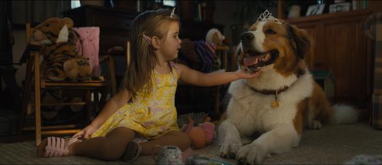 베일리(오른쪽)는 '씨제이만 있으면 행복하'개''다. 영화 '안녕 베일리'에서 아기 씨제이과 놀아주는 견공 베일리의 모습. [사진 CGV아트하우스]