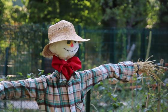 밀짚모자 쓴 허수아비. 모든 걸 바쳐 가을 들녘을 지키는 수호자다.[사진 pixabay]