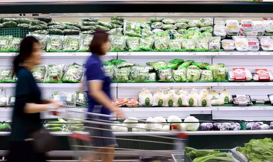 3일 서울의 한 마트에서 시민이 채소를 고르고 있다. 통계청이 발표한 소비자물가동향에 따르면 올해 8월 소비자물가지수는 104.81로 전년 동월 104.85보다 하락했다. 소비자물가 상승률이 마이너스를 기록한 것은 통계 집계 후 처음이다. [뉴스1]