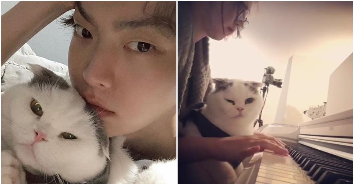 안재현과 구혜선이 각각 인스타그램에 올린 반려묘 '안주'와 함께 있는 모습. [인스타그램]