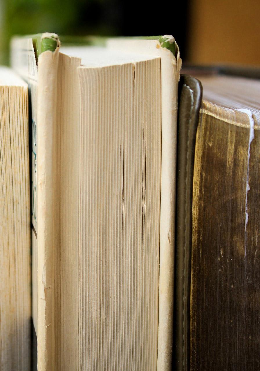 성경을 1000번 읽고서도 왜 모를까?
