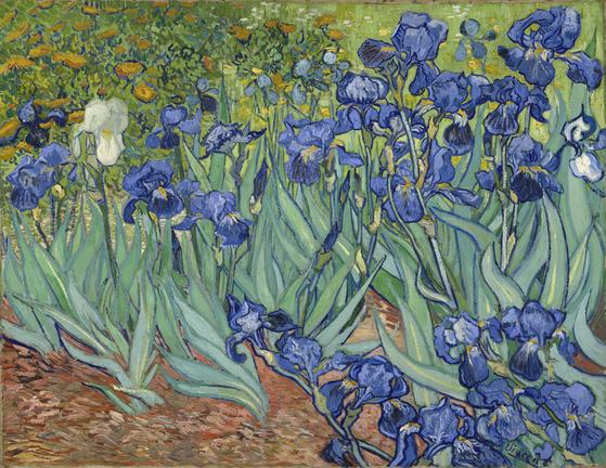 Vincent van Gogh, Irises, 1889, Oil on canvas, 74.3 x 94.3cm [출처 Wikimedia Commons(Public Domain)]