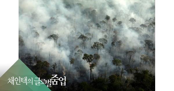 중국 수출할 콩 경작지 욕심에 지구촌 허파에 불 질렀다