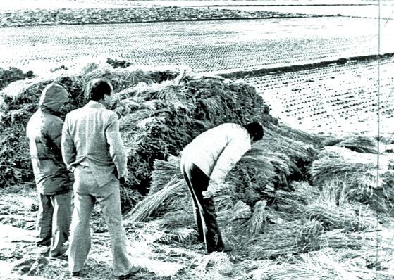 1987년 1월 5차 사건 현장인 화성 황계리 현장을 경찰이 살펴보고 있다.[연합뉴스]