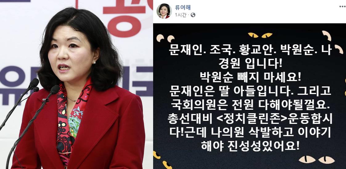 류여해 전 자유한국당 최고위원. [중앙포토, 류여해 페이스북]
