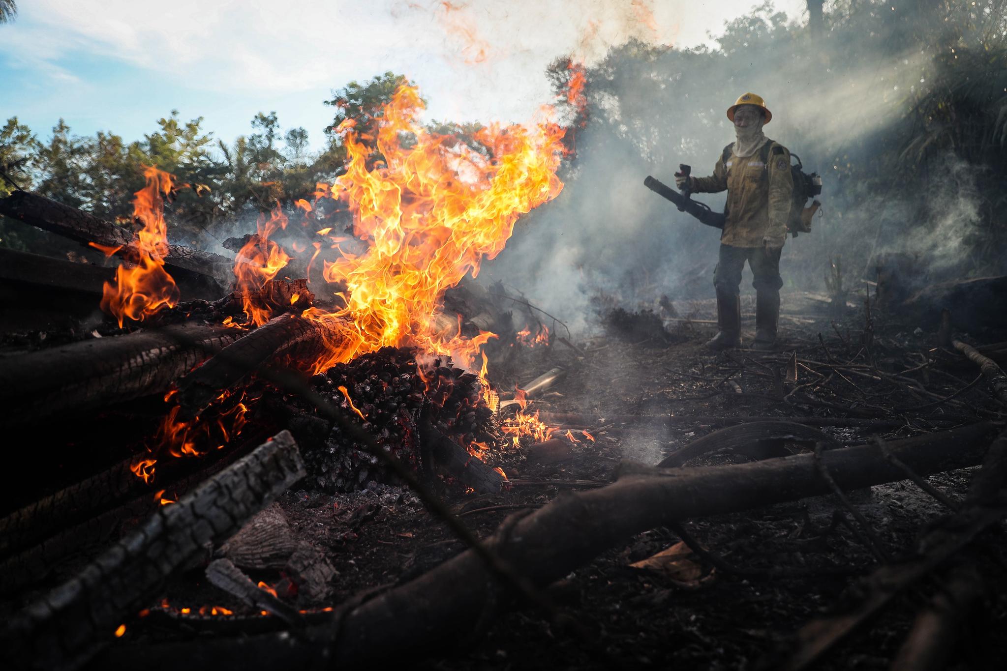 브라질 북부 아마조나스주 휴마이타에 있는 아마존 강 유역의 열대우림에서 지난 7일 현지인 소방대원이 산불을 끄고 있다. [EPA]