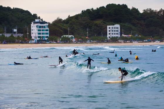 강원도 양양에서는 가을 서핑을 즐기는 사람이 많다. 파도 질이 좋고 바닷물이 차지 않다는 걸 아는 사람이 늘면서다. 오는 10월 11~13일 죽도 해변에서 '양양 서핑 페스티벌'도 열린다. 최승표 기자