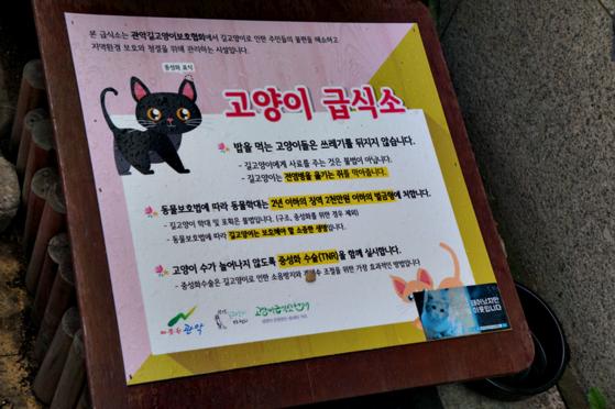 행운동 주민센터 우측 급식소에 있는 '고양이 급식소' 설명이다.