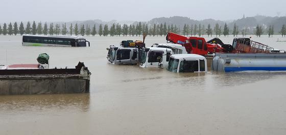 3일 제18호 태풍 '미탁'의 영향으로 강원 강릉에 300㎜가 넘는 폭우가 쏟아진 가운데 오죽헌 앞 경포 습지 주차장의 차들이 모두 물에 잠겼다. [연합뉴스]