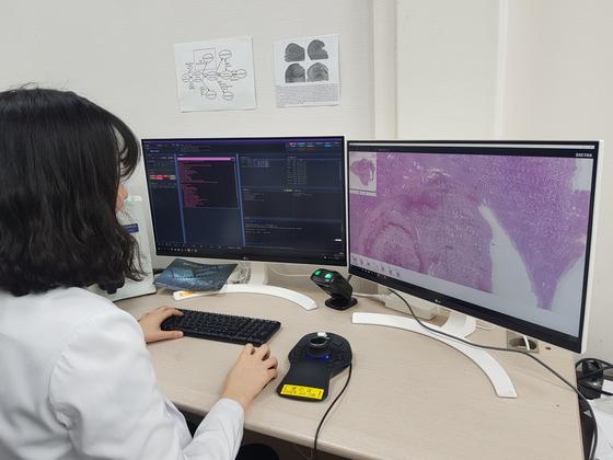 서울대병원 병리 전문의가 디지털로 변환한 암환자 조직을 화면에 띄워 검사하고 있다. [사진 병리학회]