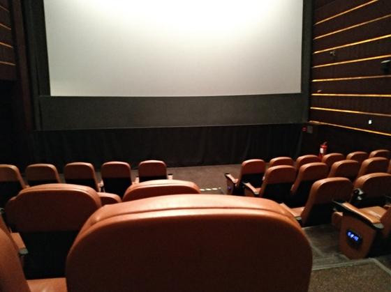 친구들이 대기업 입사 준비를 할때 나는 영화제에 빠져 있었다. 보고 싶은 영화를 선택하는 것이 아니라 무료로 볼 기회가 있으면 어디든 가서 줄을 섰다. [사진 pexels]