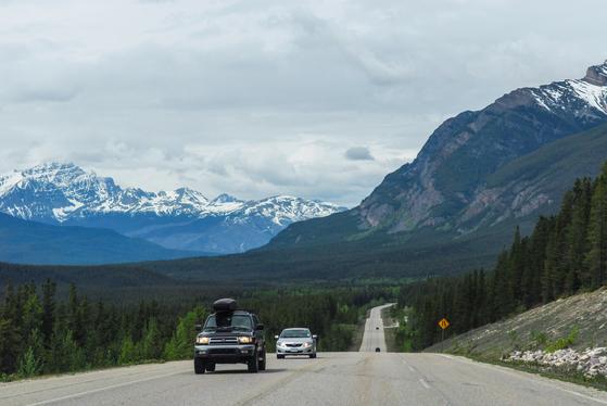 지난 9월 16일부터 영국, 스위스, 캐나다 등 33개국에서 통용되는 '영문 운전 면허증' 발급이 시작됐다. 해외서도 렌터카를 이용하는 여행객이 급증할 전망이다. 캐나다 아이스필드 파크웨이를 달리는 자동차들. [중앙포토]