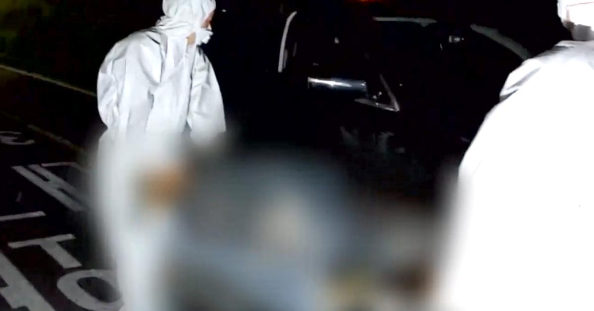 서울에 나타난 야생 멧돼지. [서울강서소방서=연합뉴스TV]