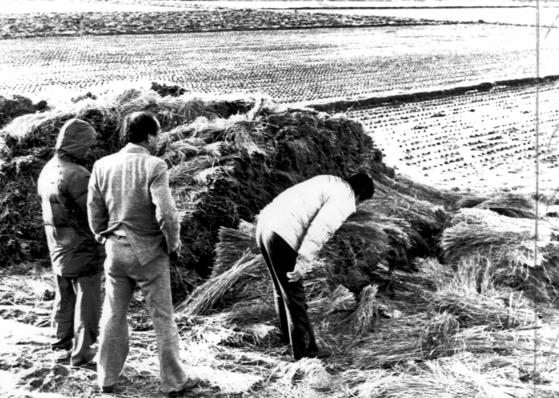1987년 1월 화성연쇄살인 5차 사건 현장인 화성 황계리 현장을 경찰이 살펴보고 있다. [연합뉴스]