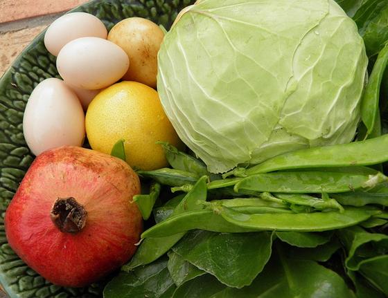 올해부터 시행된 '농약허용물질목록관리제도'는 소비자를 위한 안전한 먹거리 차원에서 긍정적이지만 농민의 불만이 없지 않다. 허용 농약 가짓수가 적어 막상 사용하려면 쓸만한 것이 없다. [사진 pixabay]